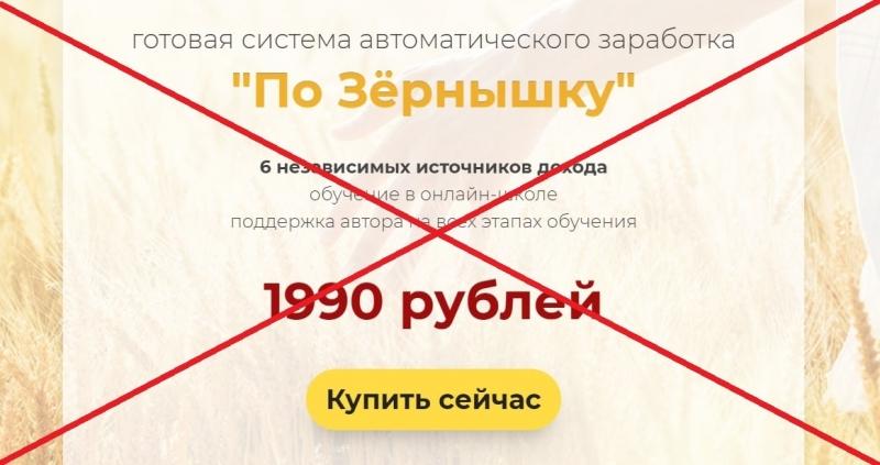 Курс Александра Писаревского «По Зёрнышку» — отзывы, обзор и проверка - Seoseed.ru
