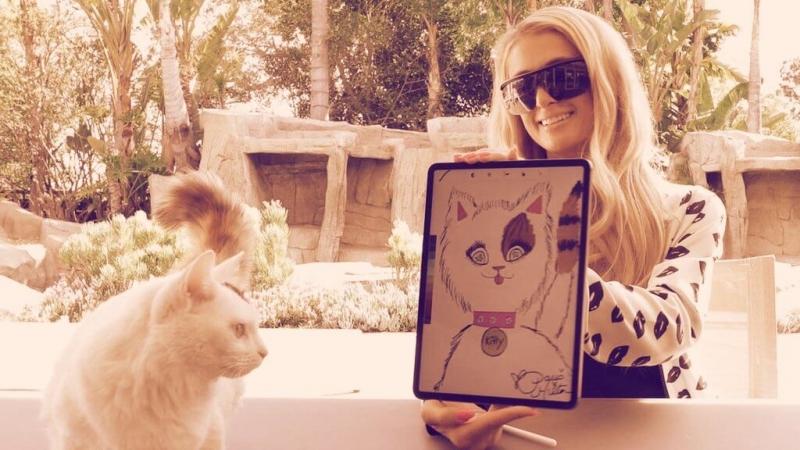 Пэрис Хилтон продала портрет своего кота за 40 эфиров на криптовалютном аукционе