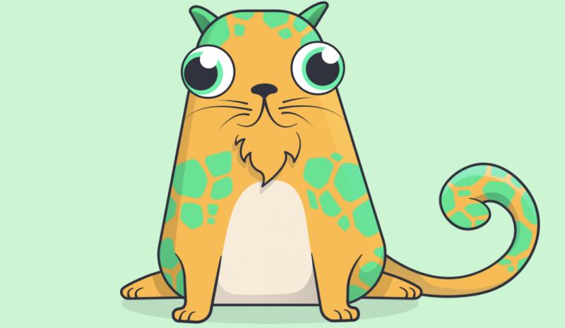 Мир сошёл с ума: на котиков из CryptoKitties потратили 12 миллионов долларов
