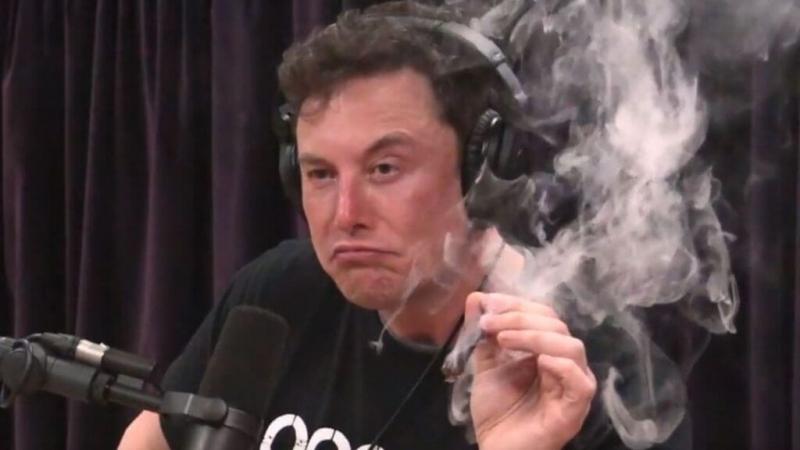 К чёрту Tesla: как Илон Маск стал генеральным директором Dogecoin